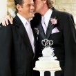 Gay Wedding - Affectionate Moment — Stock Photo