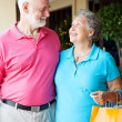 Stock Photo: Senior Shoppers In Love