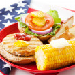 Patriotic American Turkey Burger — Stock Photo