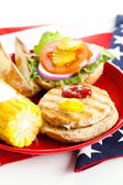 Healthy American Picnic — Stock Photo