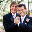Gay Couple - Wedding Portrait - Stock Photo