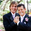 Stock Photo: Gay Couple - Wedding Portrait