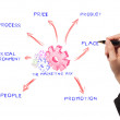 Stock Photo: Womdrawing marketing mix ideboard of business process