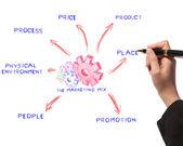 Woman drawing the marketing mix idea board of business process — Stock Photo