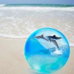 Dolfijn springen in kristal over zand en zee — Stockfoto