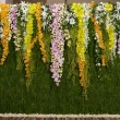 Stock Photo: Flowers backdrop decorate for wedding ceremony