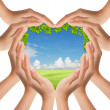 Hands make heart shape cover nature — Stock Photo