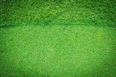 Real green grass background — Stockfoto