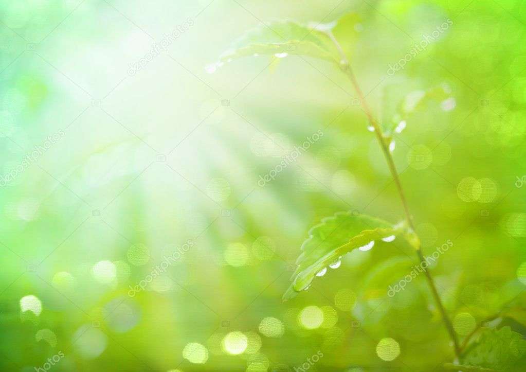 Abstract blur spring blackground in Manual Mode with Bokeh — Stock Photo #12329115