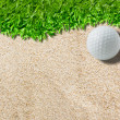 White golf ball on green ( real green grass  background) — Stock Photo