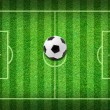 Real green grass soccer field background — Stock Photo