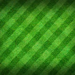 Real green grass field background — Stock Photo #12342773
