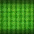 Real green grass field background — Stock Photo #12343189