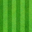 Real green grass field background — ストック写真