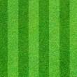 echte grüne Gras Feld Hintergrund — Stockfoto