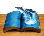 Magic book with three dolphins jump from book page — Stock Photo