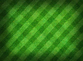 Real green grass field background — Stockfoto