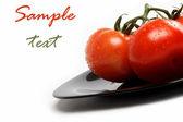 Tomates frescos en un plato, aislado sobre un fondo blanco. — Foto de Stock