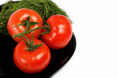 Fresh tomatoes on a plate, isolated on a white background. — Stock Photo