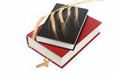 Two books. Holy Bible on white background. — Stock Photo
