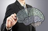 Business man drawing human brain diagram — Stock Photo