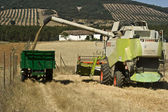 Machine harvester working in a field — Stock Photo