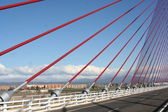 The cable-stayed bridge Talavera, a construction a dimension of 185 m — Stock Photo