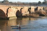 Roman Bridge, Old Bridge, Talavera de la Reina, Toledo — Stock Photo
