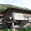 Asturian granary, Hórreo Asturian, Principality of Asturias — Stock Photo