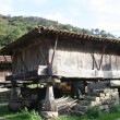 Asturigranary, Hórreo Asturian, Principality of Asturias — Stock Photo #11870661