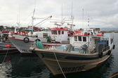 Balıkçı teknesi, liman balıkçılık — Stok fotoğraf