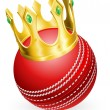 King of cricket - Stock Vector
