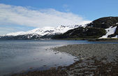 Looking towards Whittier Alaska in summer — Stock Photo