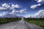 Denali Highway in Summer — Stock Photo
