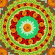 Floral Mandala Drawing - Sacred Circle — Stock Photo