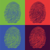 Fingerprints detailed — Stock Vector