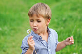 Young boy blowing dandelion — Stock Photo