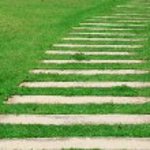 Stone path through a green grassy lawn — Stock Photo #10864101
