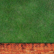 Wall Background on green grass — Stock Photo