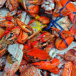 Fresh Crab in the market — Stock Photo