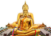 Big buddha statue at Wat muang temple in thailand — Stock Photo
