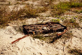 Garbage on a beach — Stock Photo