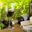 Red wine, Brie, Camembert and grape on the wood table — Stock Photo