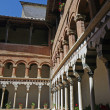 Stock Photo: Tuscan,cloister