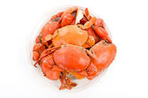 Steamed crabs on white plate — Stock Photo