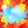 Frame of autumn maple leaves — Stock Vector