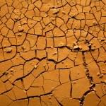tierra seca agrietada — Foto de Stock