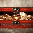 treasure chest — Stock Photo #10839392