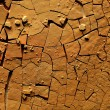 Dried cracked earth — Stock Photo #10844303