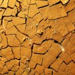 Dried cracked earth — Stock Photo #10846923